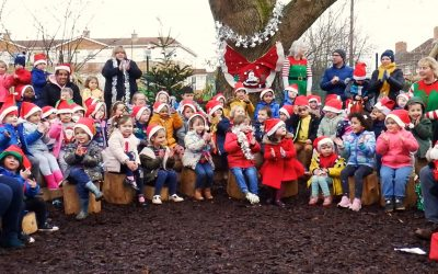 Acorns, Willow and Beech Christmas Performances 2020