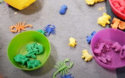 Video: Sorting with Compare Toys